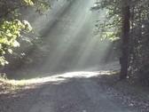 pegs path wom